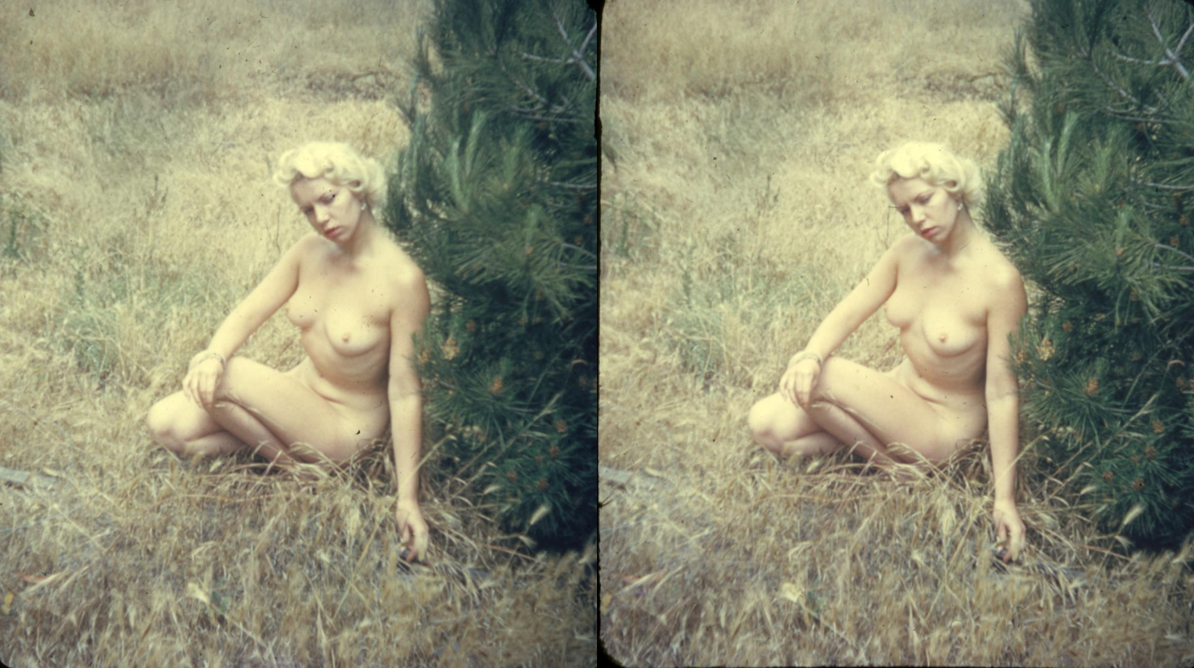 Ideal Stereoscopic Images Nude Images